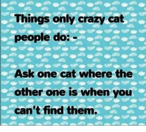 Crazy, Memes, and 🤖: Things only crazy cat  people do:  Ask one cat where the  other one is when you  can't find them.