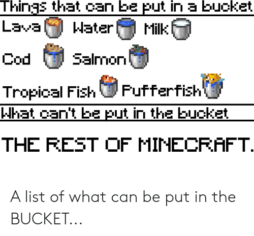 Things That Can Be Put in a Bucket Lava Milk JEIEM Salmon Cod