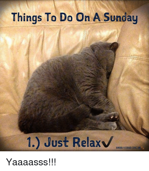 Things To Do On A Sunday 1 Just Relax Yaaaasss Meme On Meme