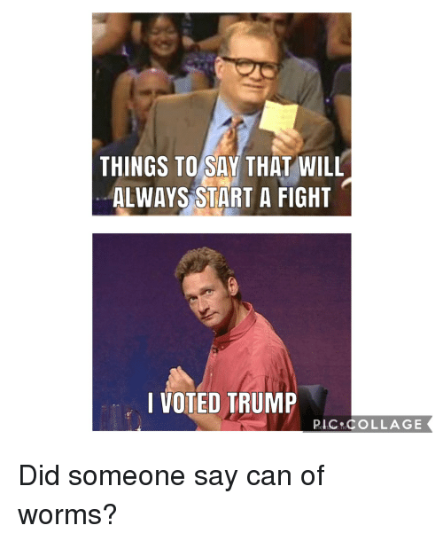 Politics, Collage, and Trump: THINGS TO SAV THAT WILL  ALWAYS START A FIGHT  I VOTED TRUMP  nlc COLLAGE