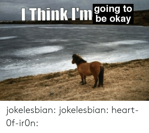 Target, Tumblr, and Blog: Think l'ie osay  going to jokelesbian:  jokelesbian:  heart-0f-ir0n: