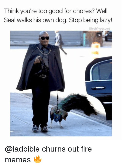 Fire, Lazy, and Memes: Think you're too good for chores? Well  Seal walks his own dog. Stop being lazy!  @highfiveexpert @ladbible churns out fire memes 🔥