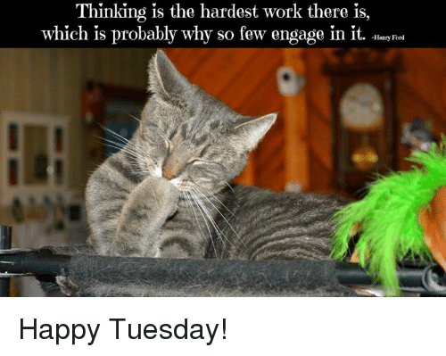Funny Memes For Tuesday : Thinking is the hardest work there is which is probably why so few