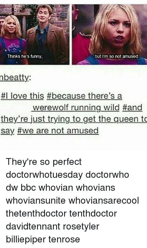 Funny, Love, and Memes: Thinks he's funny.  but Im So not amused  nbeatty:  #I love this #because there's a  werewolf running wild Hand  they're just trying to get the queen to  say we are not amused They're so perfect doctorwhotuesday doctorwho dw bbc whovian whovians whoviansunite whoviansarecool thetenthdoctor tenthdoctor davidtennant rosetyler billiepiper tenrose