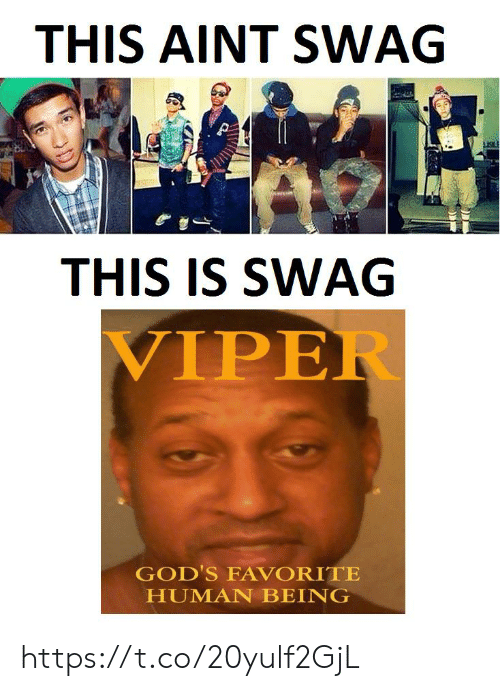 Swag, Human, and Viper: THIS AINT SWAG  THIS IS SWAG  VIPER  GOD'S FAVORITE  HUMAN BEING https://t.co/20yulf2GjL