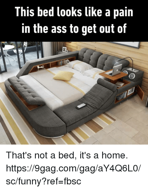 9gag, Ass, and Dank: This bed looks like a pain  in the ass to get out of That's not a bed, it's a home. https://9gag.com/gag/aY4Q6L0/sc/funny?ref=fbsc