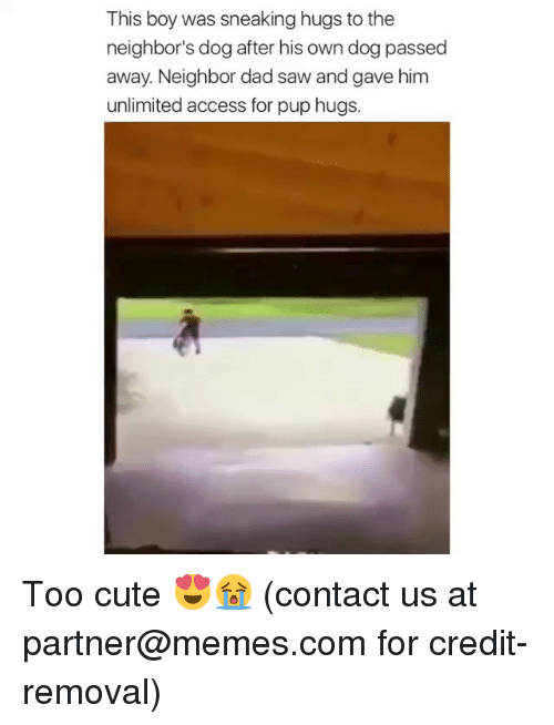 Cute, Dad, and Memes: This boy was sneaking hugs to the  neighbor's dog after his own dog passed  away. Neighbor dad saw and gave him  unlimited access for pup hugs. Too cute 😍😭 (contact us at partner@memes.com for credit-removal)