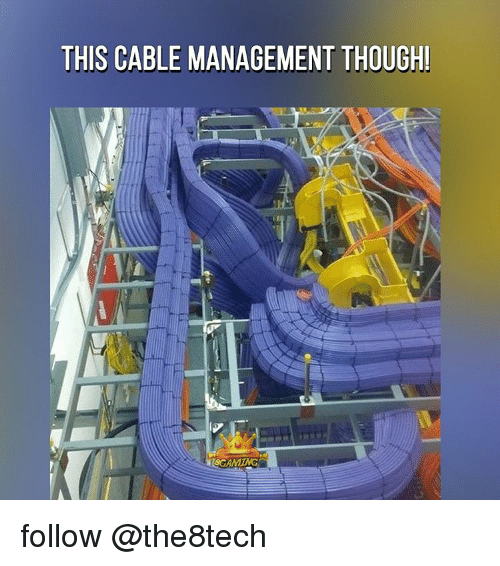this cable management though scamming follow the8tech 12435454 this cable management though! scamming follow meme on me me,Cable Meme