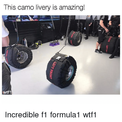 Memes, F1, and 🤖: This camo livery is a  mazing!  wtf1 Incredible f1 formula1 wtf1