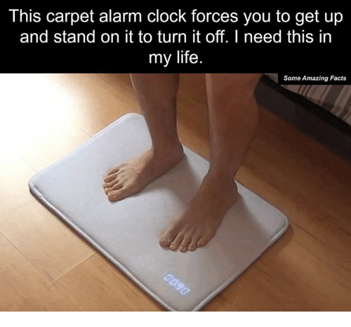 Clock, Dank, and Facts: This carpet alarm clock forces you to get up