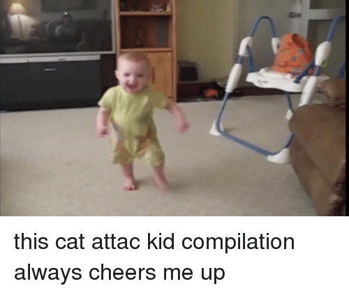 Cheers, Cat, and Kid