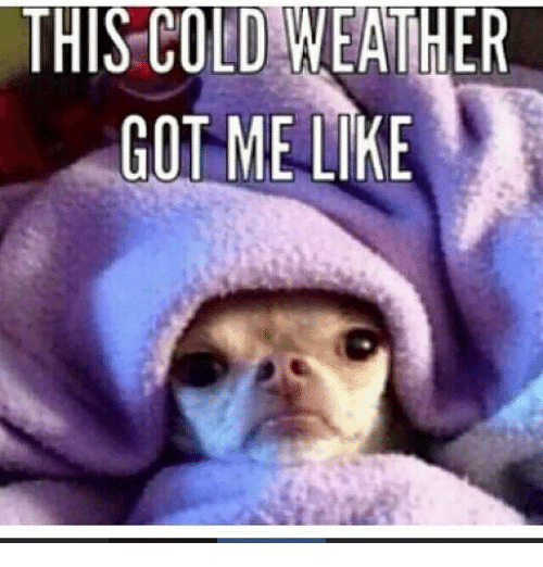 Memes, Weather, and Cold: THIS COLD WEATHER  GOT ME LIKE