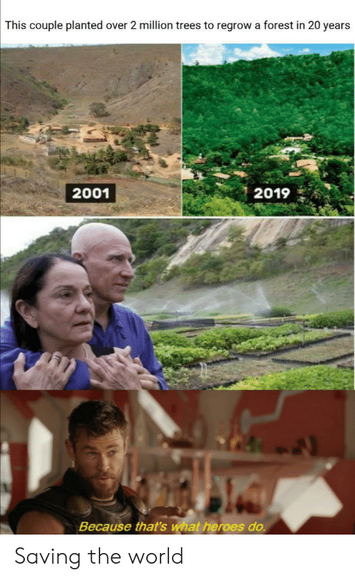 Heroes, Trees, and World: This couple planted over 2 million trees to regrow a forest in 20 years  2001  2019  Because that's what heroes do. Saving the world