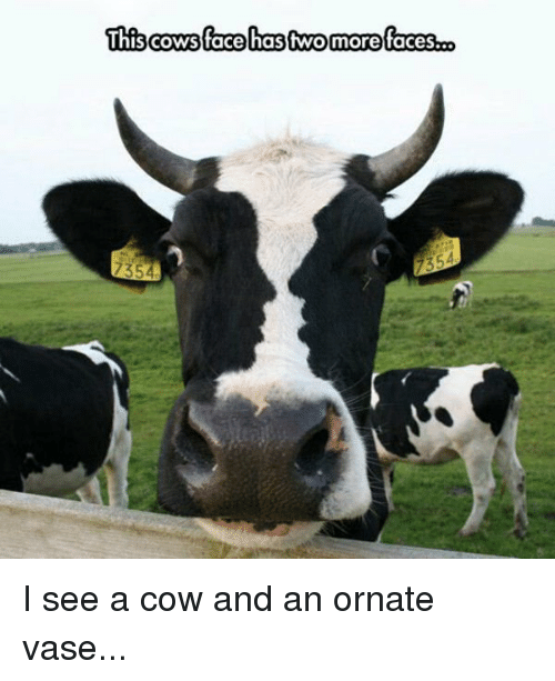 This Cows Face Has Two More Faces O 735 I See A Cow And An Ornate