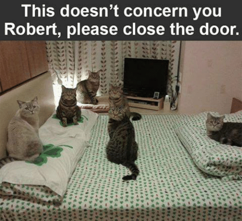 Memes, 🤖, and You: This doesn't concern you  Robert, please close the door.  nsane