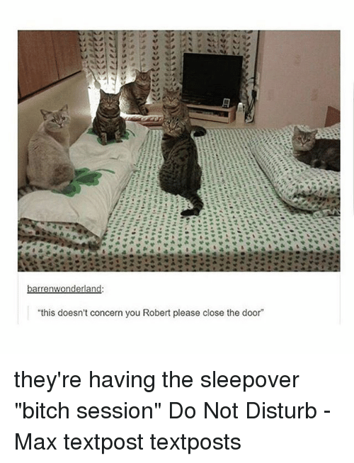 "Bitch, Memes, and Sleepover: ""this doesn't concern you Robert please close the door"" they're having the sleepover ""bitch session"" Do Not Disturb - Max textpost textposts"