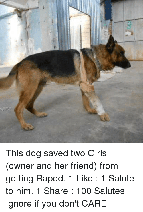 This Dog Saved Two Girls Owner And Her Friend From Getting Raped 1
