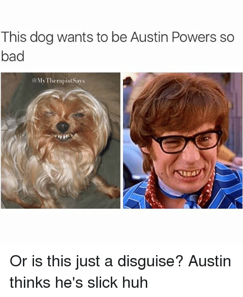 [Image: this-dog-wants-to-be-austin-powers-so-ba...155886.png]