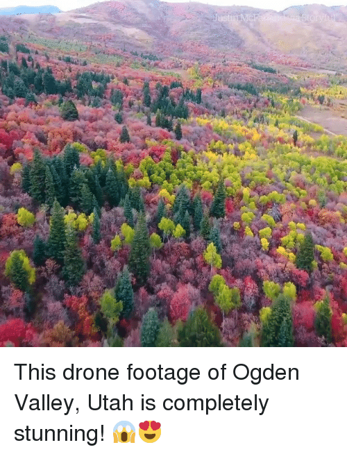 This Drone Footage of Ogden Valley Utah Is Completely