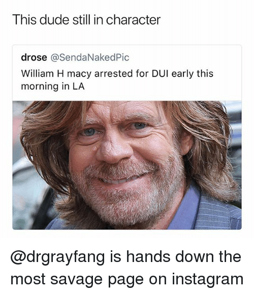 Dude, Instagram, and Savage: This dude still in character  drose @SendaNakedPic  William H macy arrested for DUI early this  morning in LA @drgrayfang is hands down the most savage page on instagram