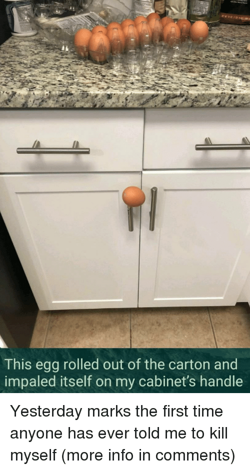 Time, First, and Yesterday: This egg rolled out of the carton and  impaled itself on my cabinet's handle