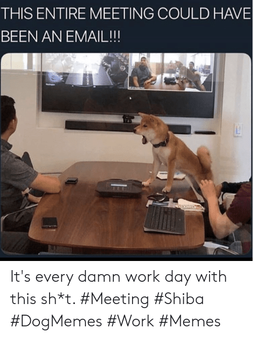 Memes, Work, and Email: THIS ENTIRE MEETING COULD HAVE  BEEN AN EMAIL!!! It's every damn work day with this sh*t. #Meeting #Shiba #DogMemes #Work #Memes