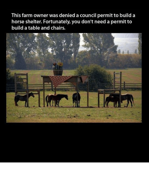 Memes Horse and ? This farm owner was denied a council permit to : horse shelter table and chairs - Cheerinfomania.Com