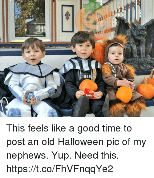 Halloween, Memes, and Good: This feels like a good time to post an old Halloween pic of my nephews. Yup. Need this. https://t.co/FhVFnqqYe2