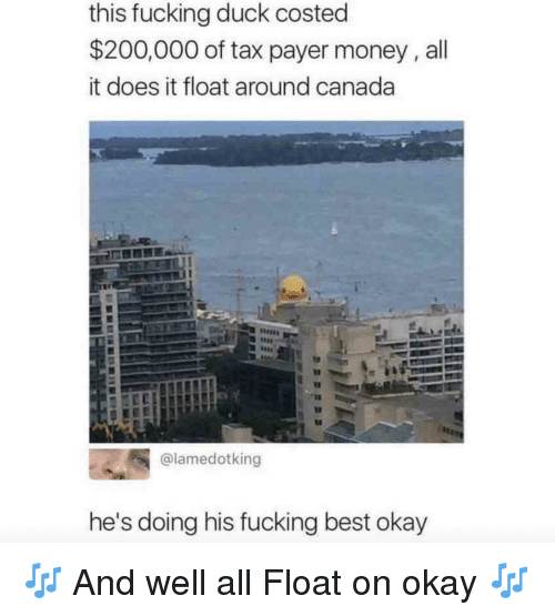 Bailey Jay, Fucking, and Money: this fucking duck costed  $200,000 of tax payer money,all  it does it float around canada  @lamedotking  he's doing his fucking best okay 🎶 And well all Float on okay 🎶