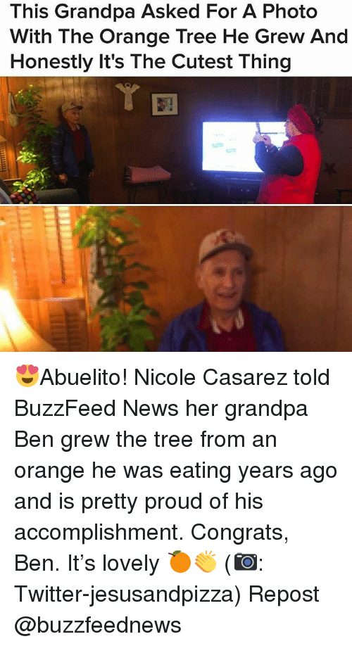 Memes, News, and Twitter: This Grandpa Asked For A Photo  With The Orange Tree He Grew And  Honestly It's The Cutest Thing 😍Abuelito! Nicole Casarez told BuzzFeed News her grandpa Ben grew the tree from an orange he was eating years ago and is pretty proud of his accomplishment. Congrats, Ben. It's lovely 🍊👏 (📷: Twitter-jesusandpizza) Repost @buzzfeednews