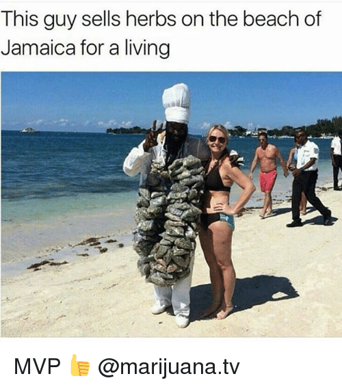 this guy sells herbs on the beach of jamaica for 21667643 this guy sells herbs on the beach of jamaica for a living mvp