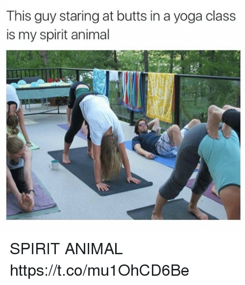 Animals Anime And Butt This Guy Staring At Butts In A Yoga Class