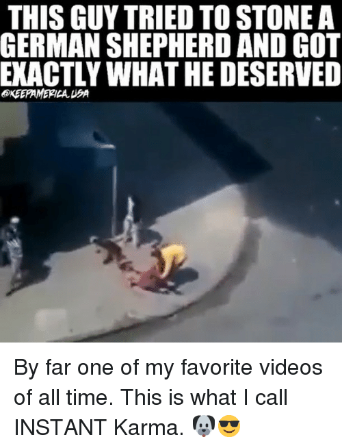 Memes, Videos, and German Shepherd: THIS GUY TRIED TO STONE A  GERMAN SHEPHERD AND GOT  EKACTLY WHAT HE DESERVED  @KEEPAMERICA UA By far one of my favorite videos of all time. This is what I call INSTANT Karma. 🐶😎