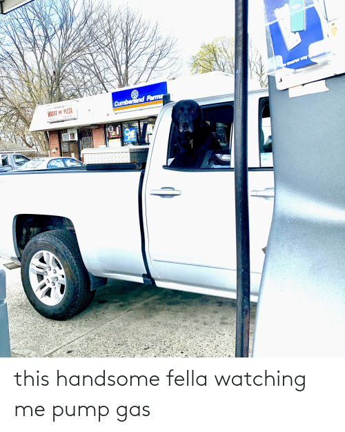 Fella, Handsome, and This: this handsome fella watching me pump gas