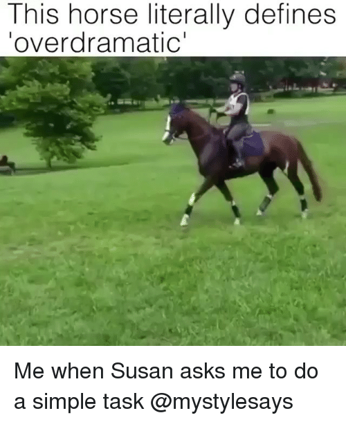 Horse, Girl Memes, and Asks: This horse literally defines  overdramatic Me when Susan asks me to do a simple task @mystylesays