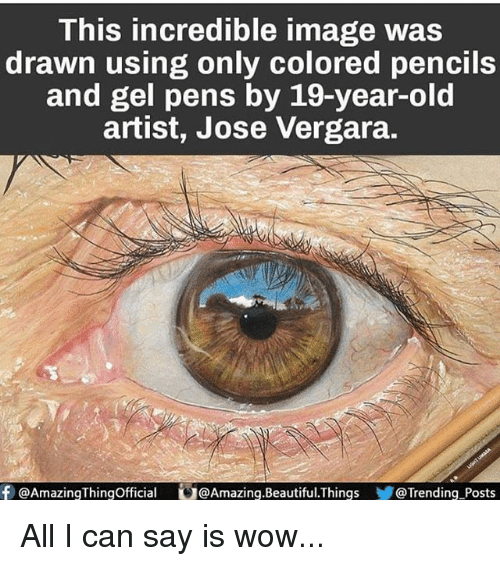 Beautiful, Memes, and Wow: This incredible image was  drawn using only colored pencils  and gel pens by 19-year-old  artist, Jose Vergara.  f Amazing Thingofficial G@Amazing.Beautiful.Things @Trending Posts All I can say is wow...