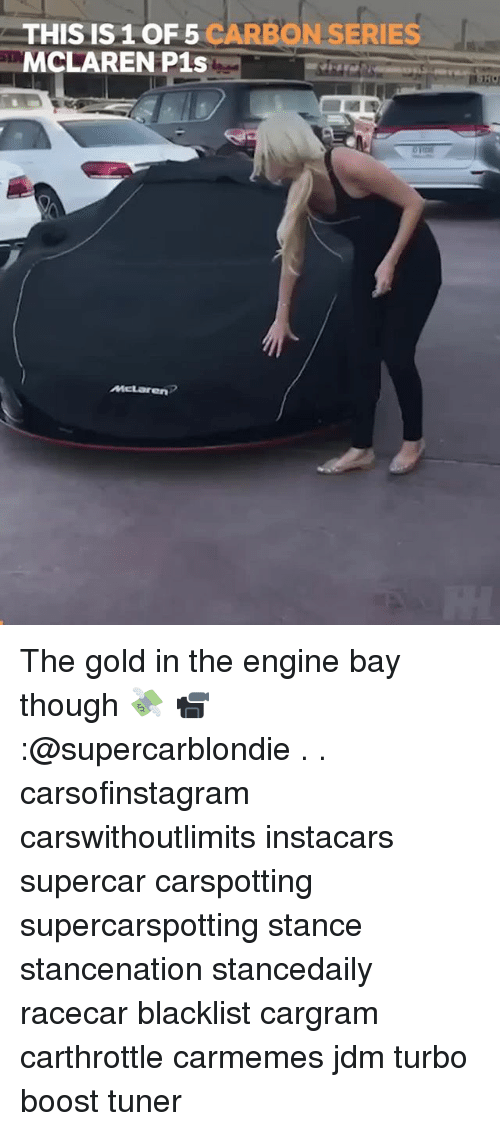 Memes, Boost, and McLaren: THIS IS 1 OF 5 CARBON SERIES  MCLAREN P1s The gold in the engine bay though 💸 📹:@supercarblondie . . carsofinstagram carswithoutlimits instacars supercar carspotting supercarspotting stance stancenation stancedaily racecar blacklist cargram carthrottle carmemes jdm turbo boost tuner