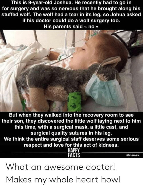 Doctor, Facts, and Love: This is 9-year-old Joshua. He recently had to go in  for surgery and was so nervous that he brought along his  stuffed wolf. The wolf had a tear in its leg, so Johua asked  if his doctor could do a wolf surgery too.  His parents said « no»>  But when they walked into the recovery room to see  their son, they discovered the little wolf laying next to him  this time, with a surgical mask, a little cast, and  surgical quality sutures in his leg  We think the entire surgical staff deserves some serious  respect and love for this act of kidness.  HAPPY  FACTS  @memes What an awesome doctor! Makes my whole heart howl