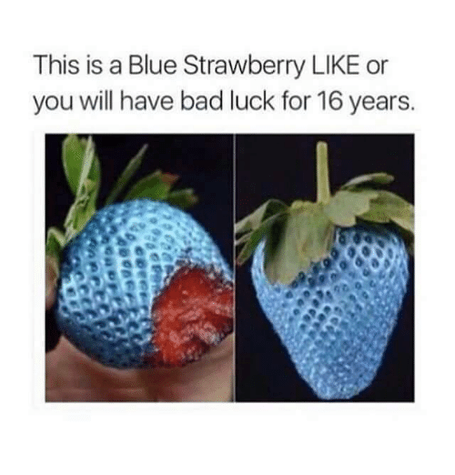 Bad, Memes, and Blue: This is a Blue Strawberry LIKE or  you will have bad luck for 16 years.