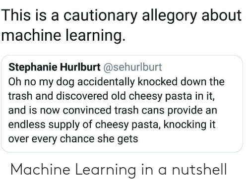 Trash, Old, and Dog: This is a cautionary allegory about  machine learning.  Stephanie Hurlburt @sehurlburt  Oh no my dog accidentally knocked down the  trash and discovered old cheesy pasta in it,  and is now convinced trash cans provide an  endless supply of cheesy pasta, knocking it  over every chance she gets Machine Learning in a nutshell