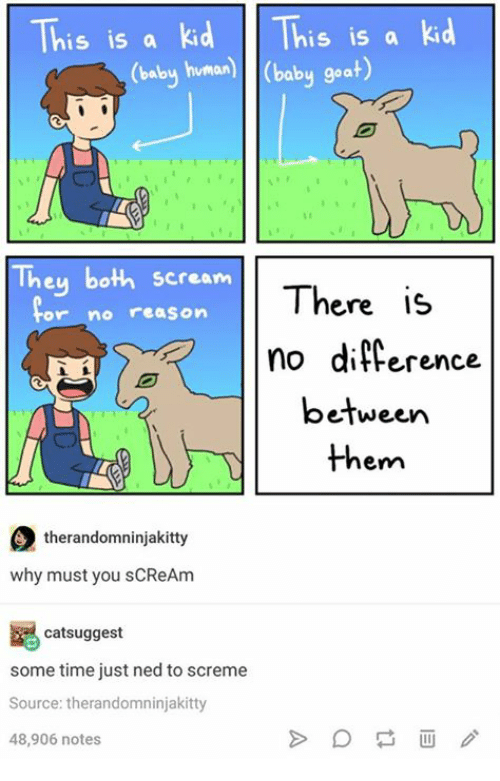 Scream, Goat, and Time: This is a kid is is a kid  y human) (baby goat)  They both scream  There is  or no reason  no difference  between  them  therandomninjakitty  why must you sCReAm  catsuggest  some time just ned to screme  Source: therandomninjakitty  48,906 notes