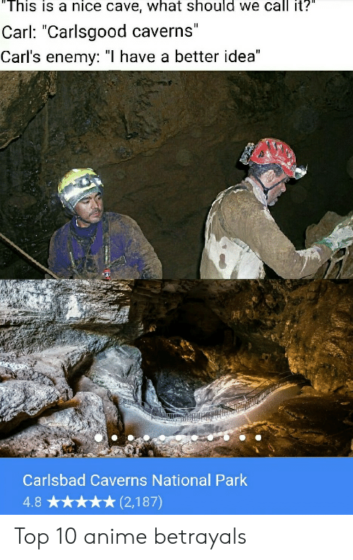 """Anime, Reddit, and Nice: """"This is a nice cave, what should we call it?""""  II  Carl: """"Carlsgood caverns""""  Carl's enemy: """"I have a better idea""""  Carlsbad Caverns National Park  (2,187)  4.8 Top 10 anime betrayals"""