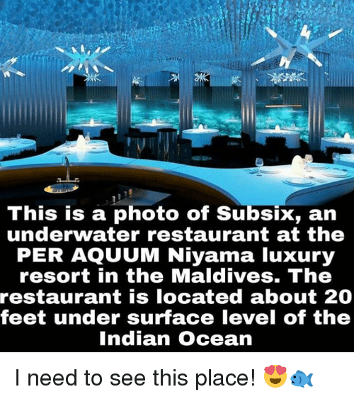 Memes, 🤖, And Maldives: This Is A Photo Of Subsix, An Underwater