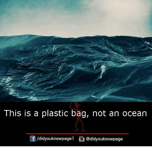 Memes, Ocean, and A Plastic Bag: This is a plastic bag, not an ocean  /didyouknowpagel  @didyouknowpage
