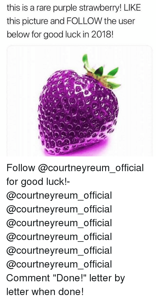 "Memes, Good, and Purple: this is a rare purple strawberry! LIKE  this picture and FOLLOW the user  below for good luck in 2018! Follow @courtneyreum_official for good luck!- @courtneyreum_official @courtneyreum_official @courtneyreum_official @courtneyreum_official @courtneyreum_official @courtneyreum_official Comment ""Done!"" letter by letter when done!"