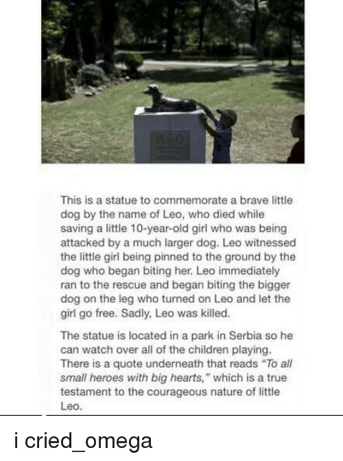 This Is a Statue to Commemorate a Brave Little Dog by the Name of