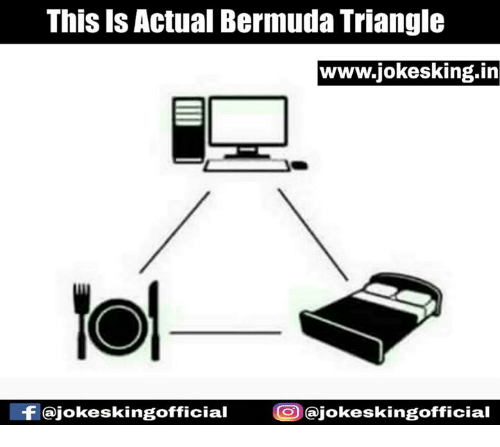 this is actual bermuda triangle www jokesking in gofficial cajokeskingofficial 5302818 ✅ 25 best memes about bermuda triangle bermuda triangle memes,Bermuda Memes