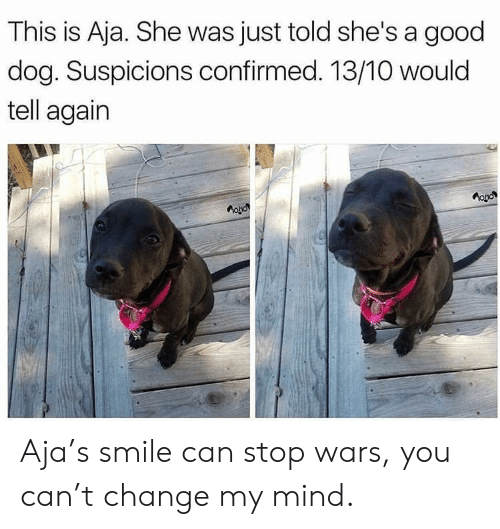 Good, Smile, and Change: This is Aja. She was just told she's a good  dog. Suspicions confirmed. 13/10 would  tell again Aja's smile can stop wars, you can't change my mind.