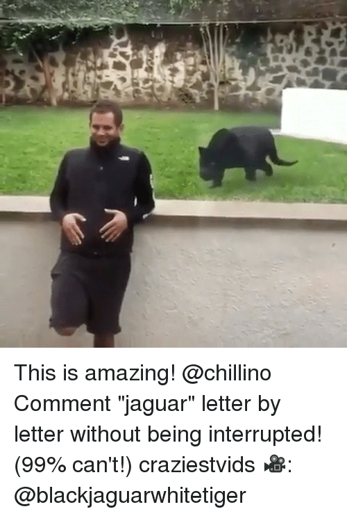 """Memes, Jaguar, and Amazing: This is amazing! @chillino Comment """"jaguar"""" letter by letter without being interrupted! (99% can't!) craziestvids 🎥: @blackjaguarwhitetiger"""