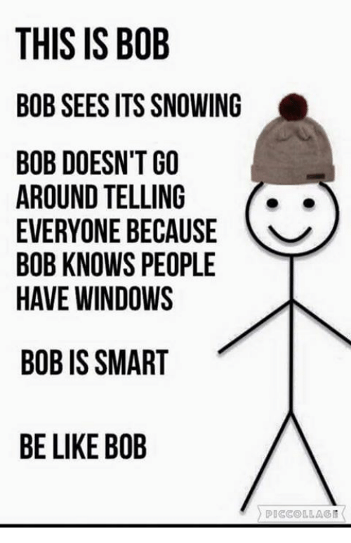 Be Like, Memes, and Windows: THIS IS BOB  BOB SEES ITS SNOWING  BOB DOESN'T GO  AROUND TELLING  EVERYONE BECAUSE  BOB KNOWS PEOPLE  HAVE WINDOWS  BOB IS SMART  BE LIKE BOB